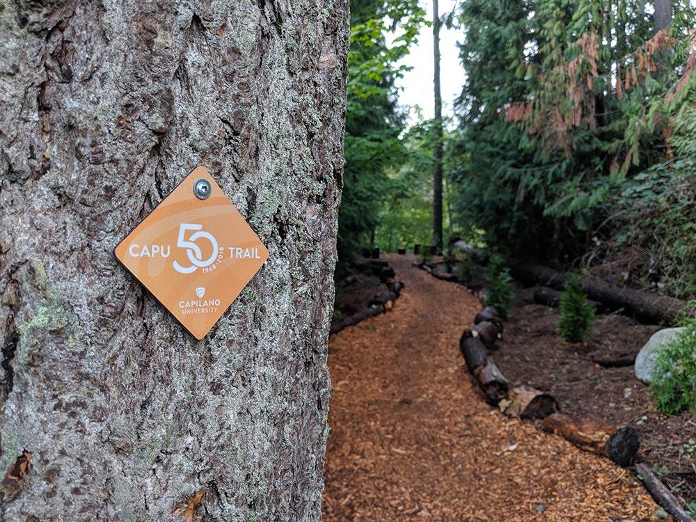 capu50-trail-gallery15